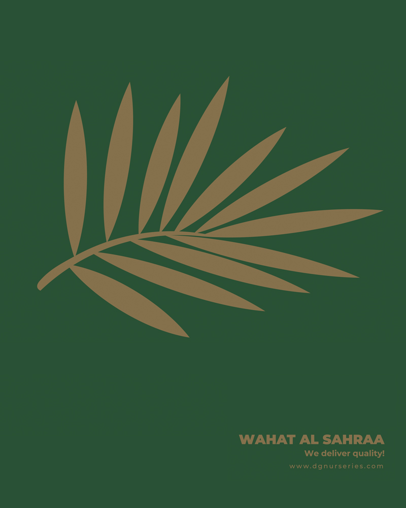 Full Plant Catalogue Cover